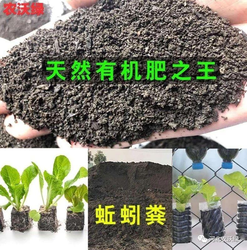 花壇 肥料